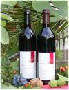 Rotweine im Barrique und im Holzfass ausgebaut